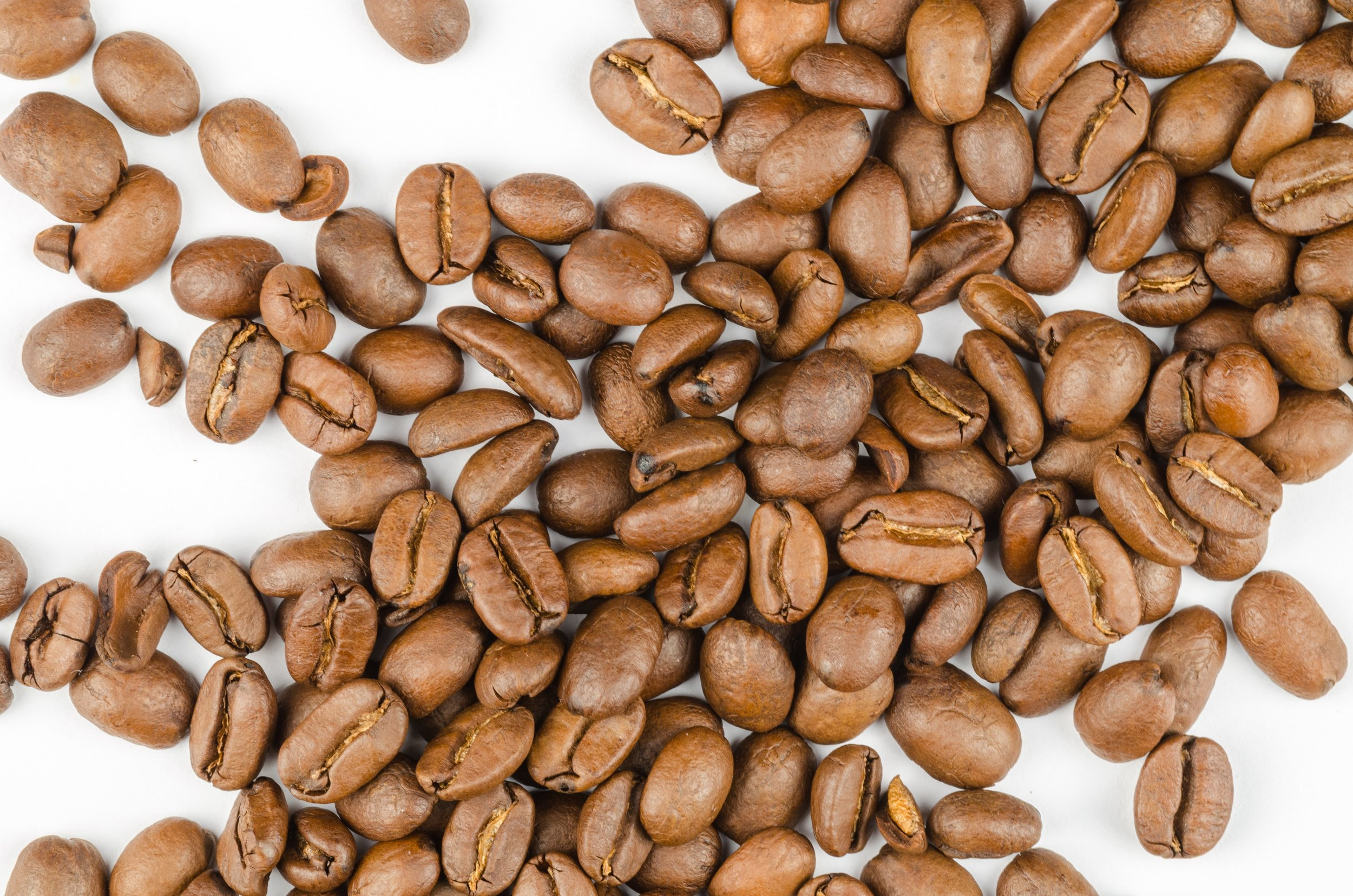 NutraStat_Mocha_Coffee.jpg