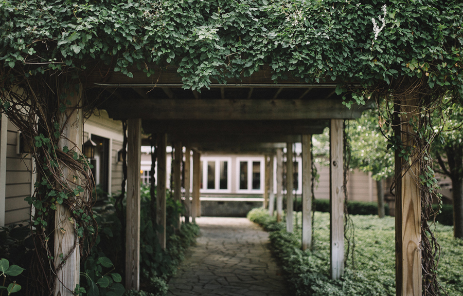 vine pathway.jpg