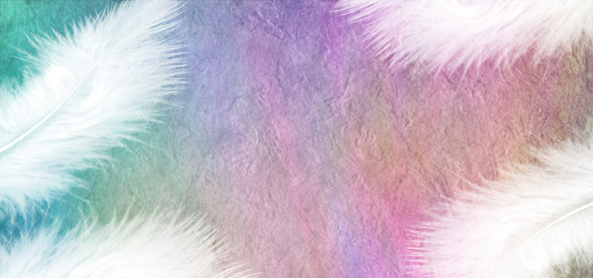 photodune-11768497-white-feathers-on-a-rainbow-stone-effect-background-m.jpg