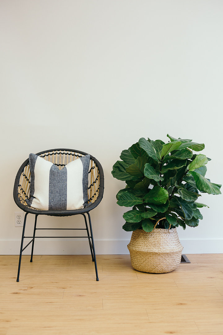 FLF_june20184of10.jpg