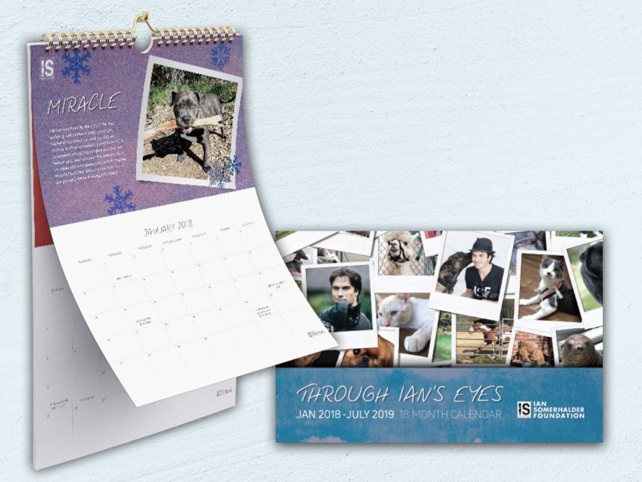 Ian Somerhalder Foundation Holiday Promotion