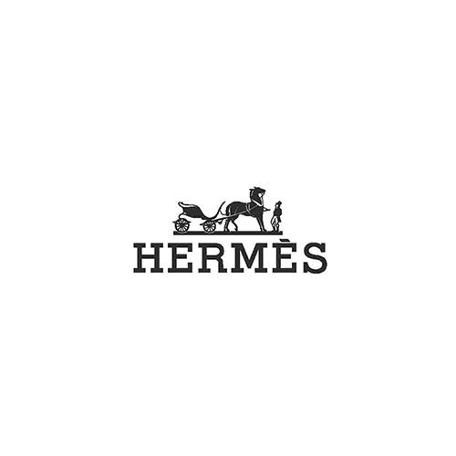 Hermes-logo.jpg