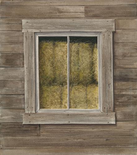 Turpin, Tony - Barnwood Window.jpg