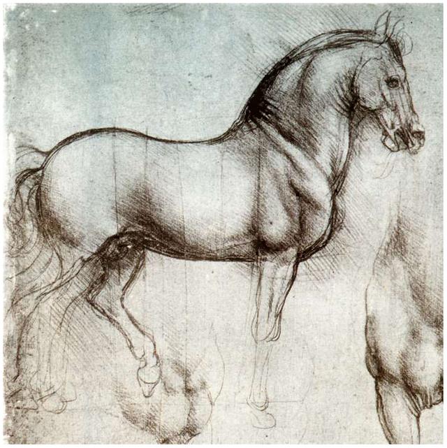 non-fiction, horsemanship