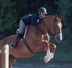 horse jump6.png
