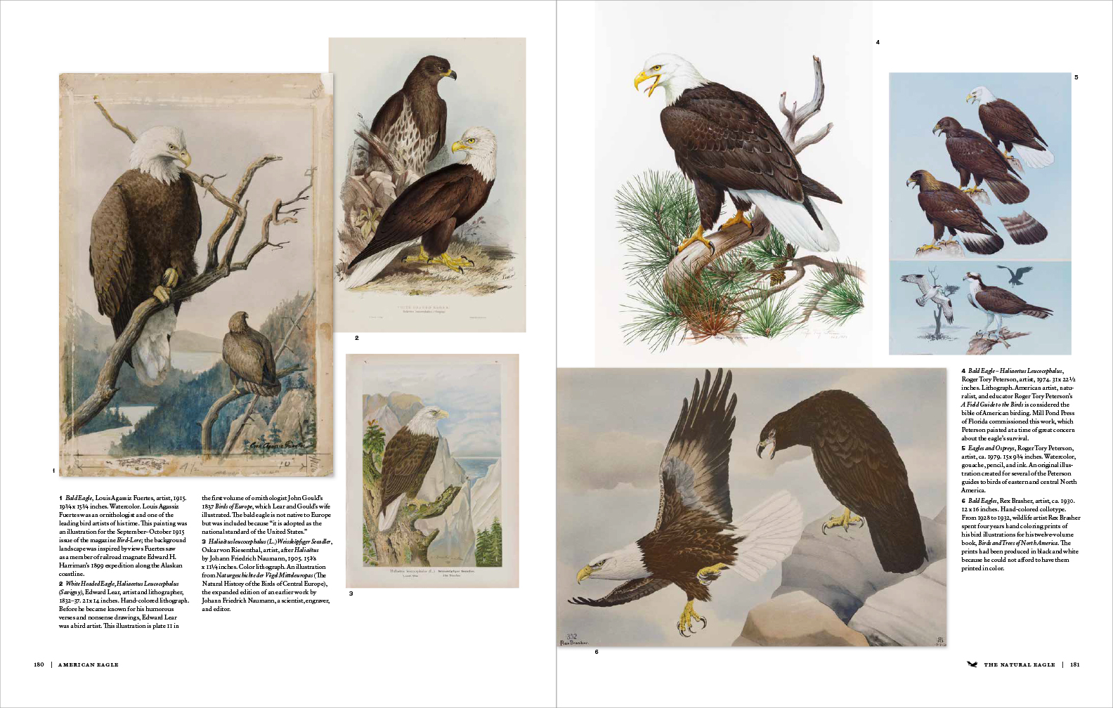 American_Eagle_Pages_180-181.jpg