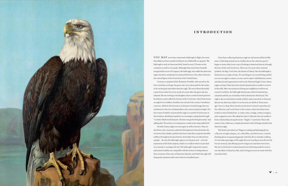 American Eagle BLAD Page 3 Thumbnail.jpg