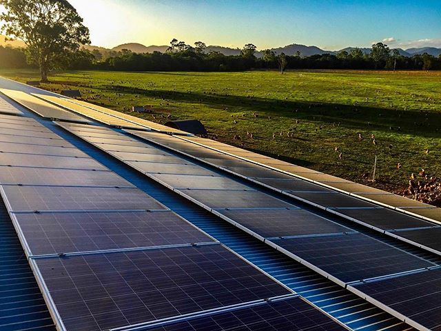 SOLAR ENERGY...☀️☀️ @manningvalleyeggs  Sustainability at its best!  #greenenergy #sustainablefarming #naturesintention