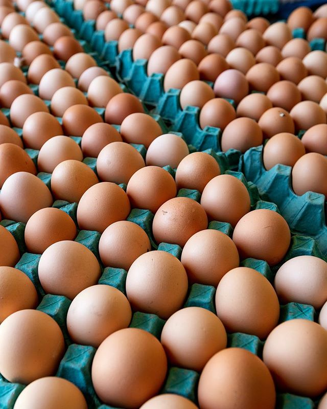 FRUITS OF OUR LABOUR ! ... 🐥  From #manningvalleyeggs to you! We are passionate farmers who produce ONLY Free Range Eggs on our pristine farms!  #pasturebasedfarming #freerange #farmtotable #tastethedifference