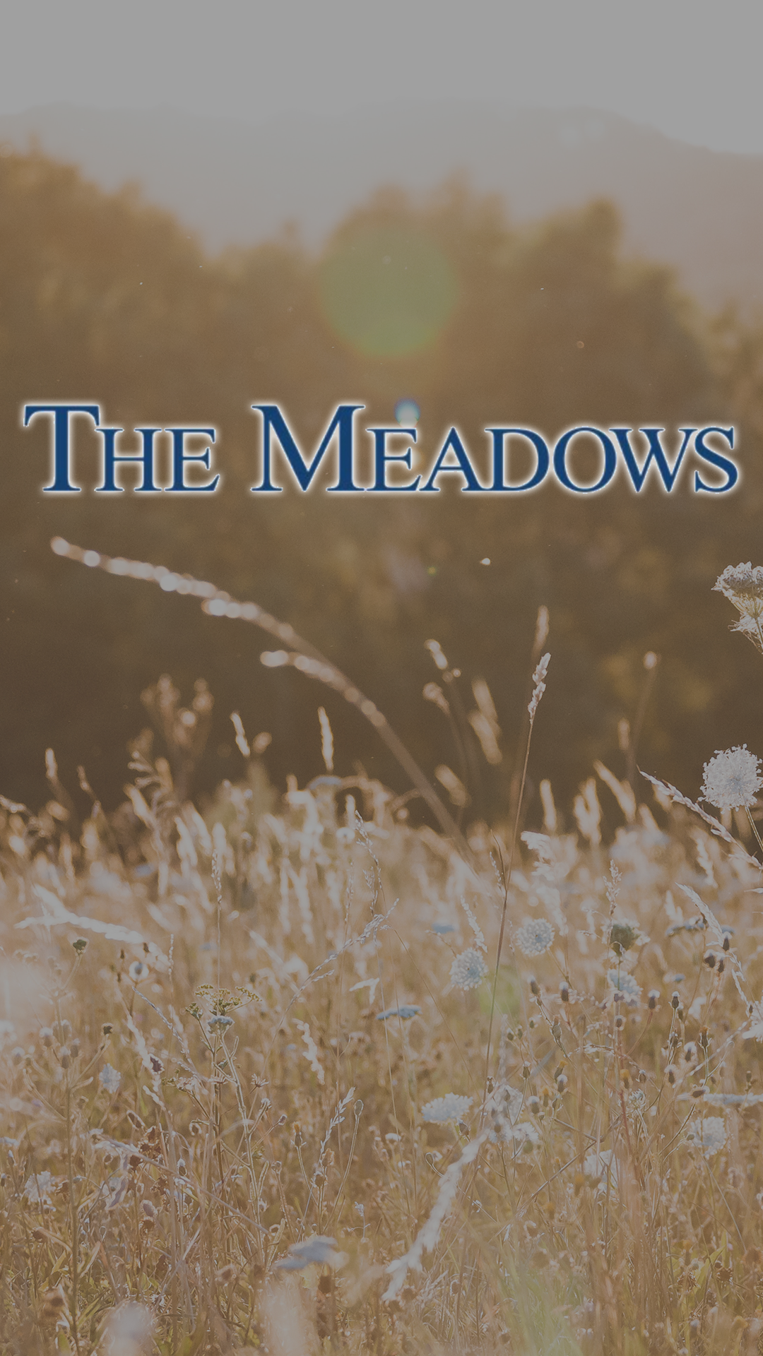 The Meadows.png