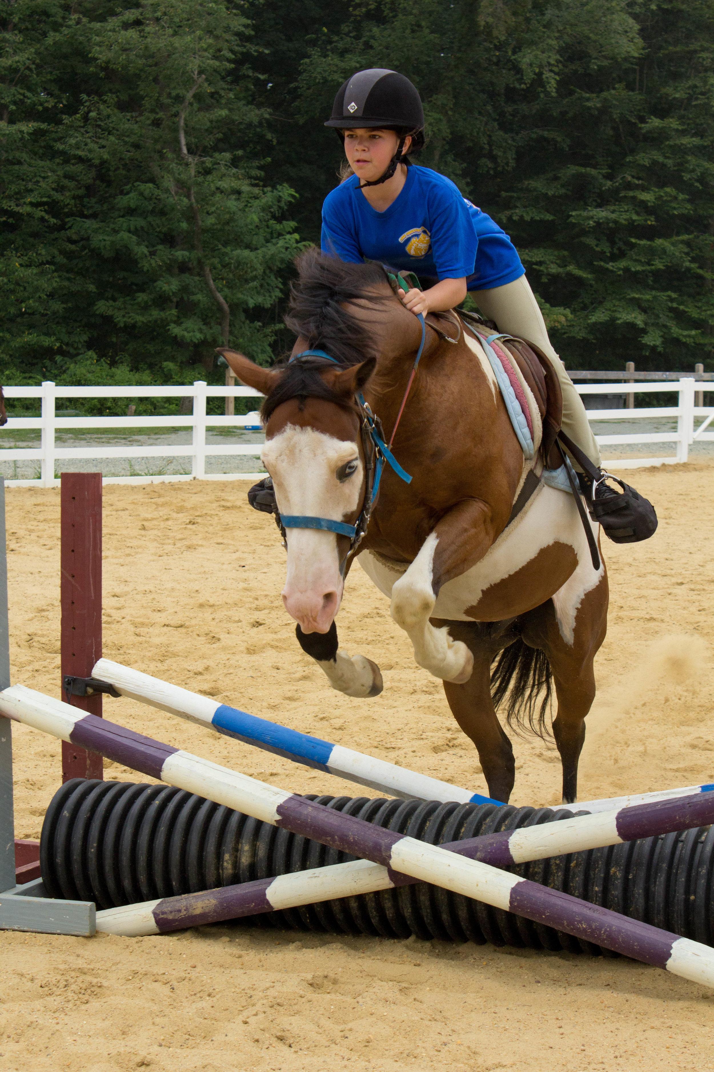 EQ Horse-5848.jpg