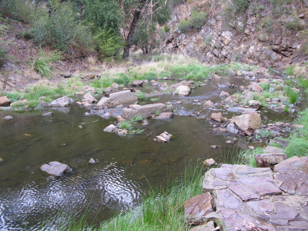 Creek Crossing 2