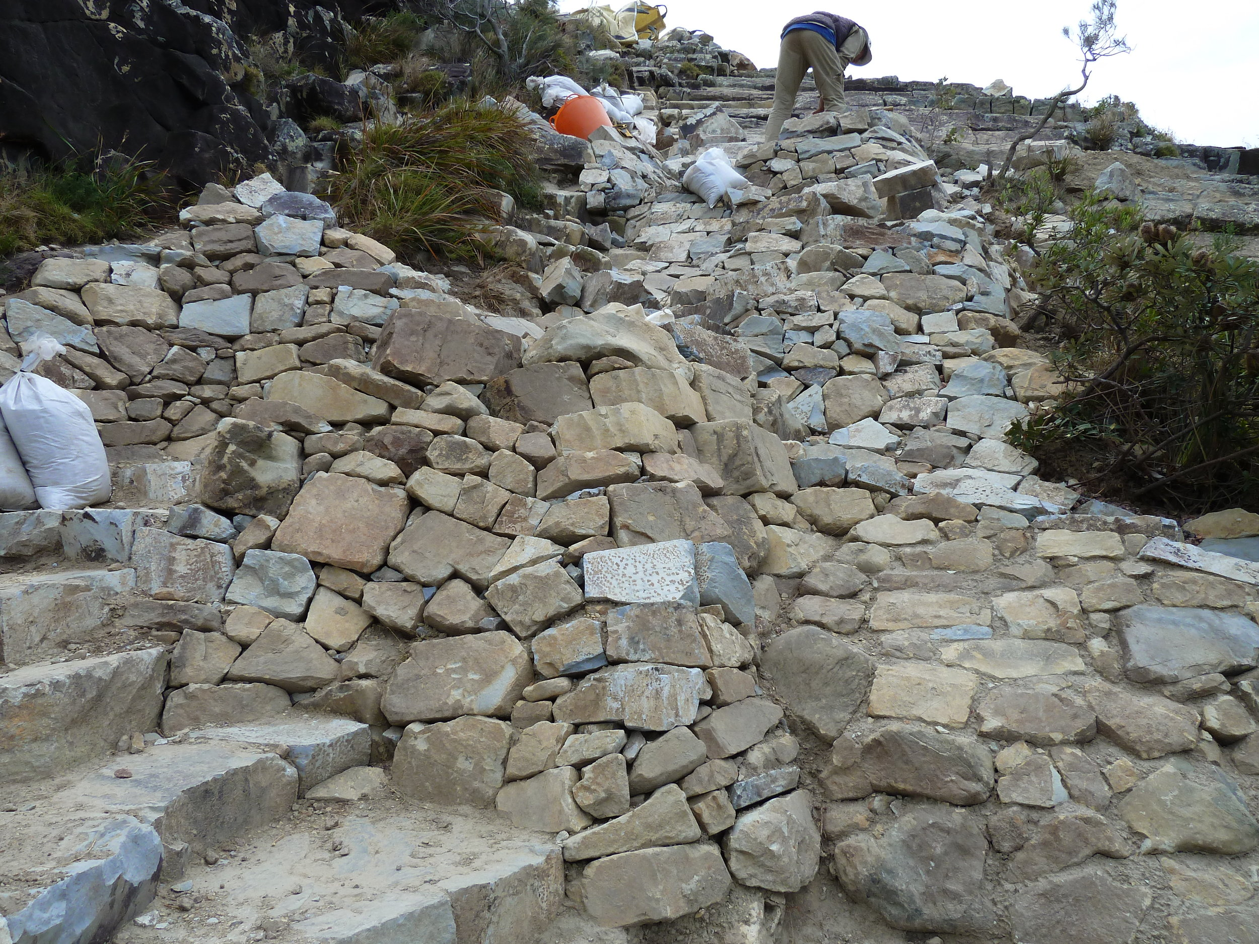 Bush Rock Wall