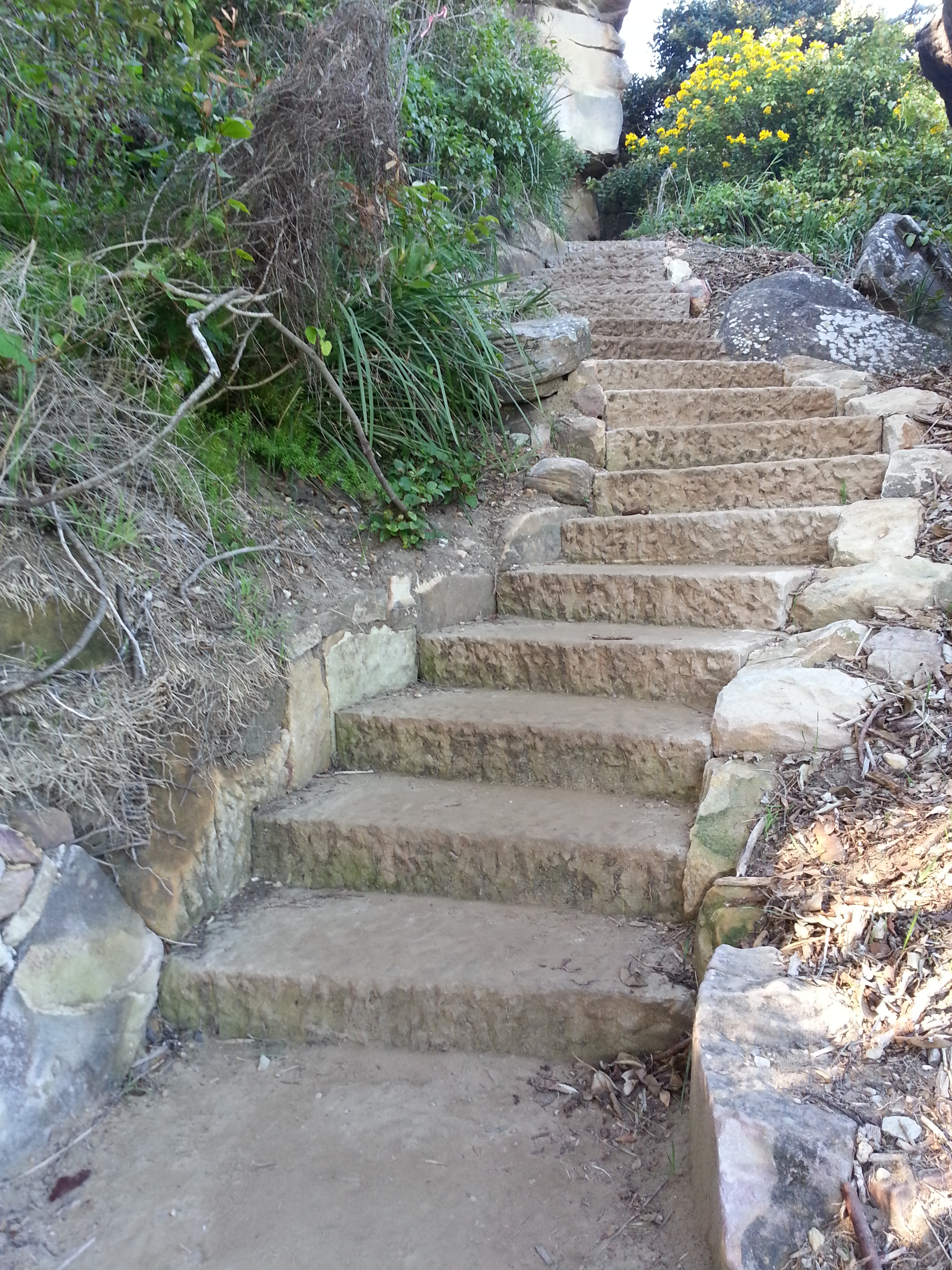Dry Stone Steps  & Staircases