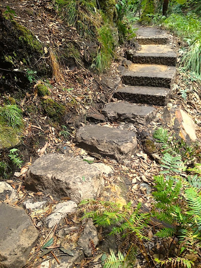 Thor and Stew's stepping stones and steps .jpg
