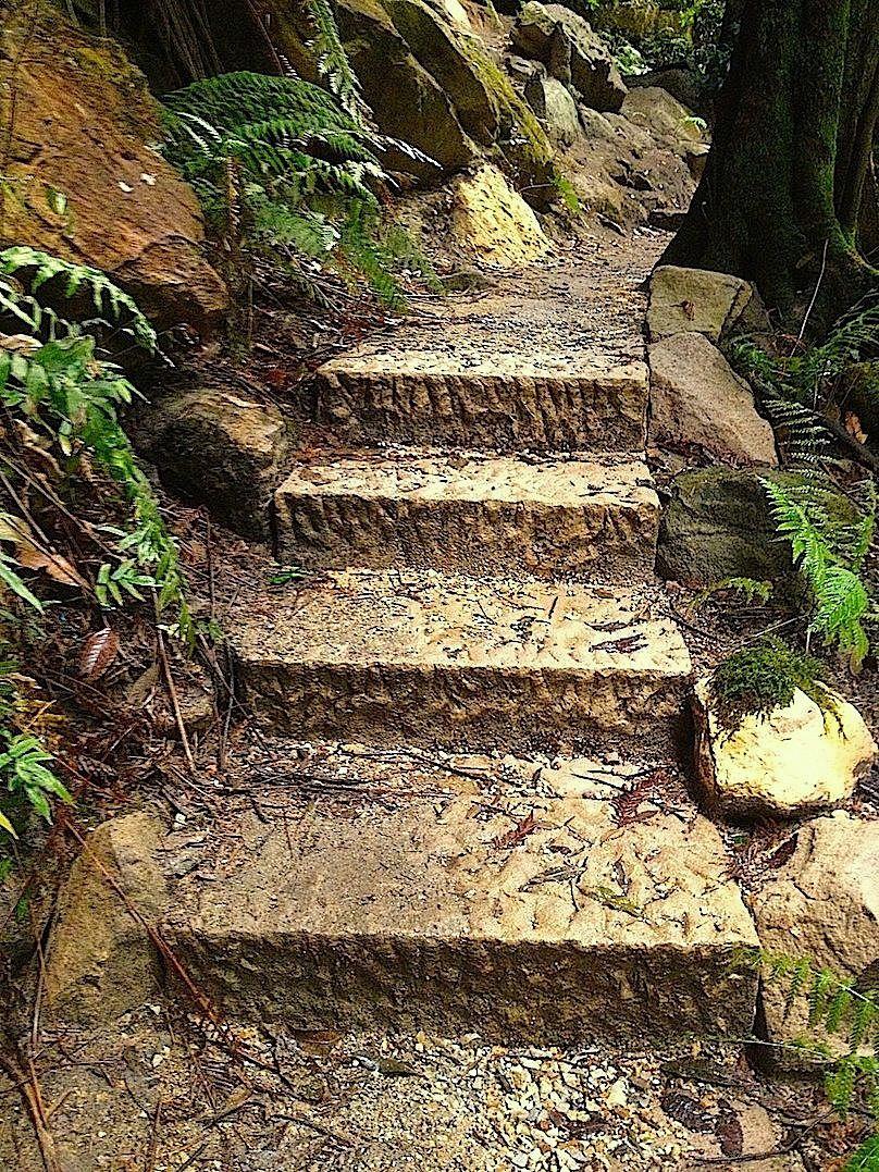 Evan's steps 4.jpg
