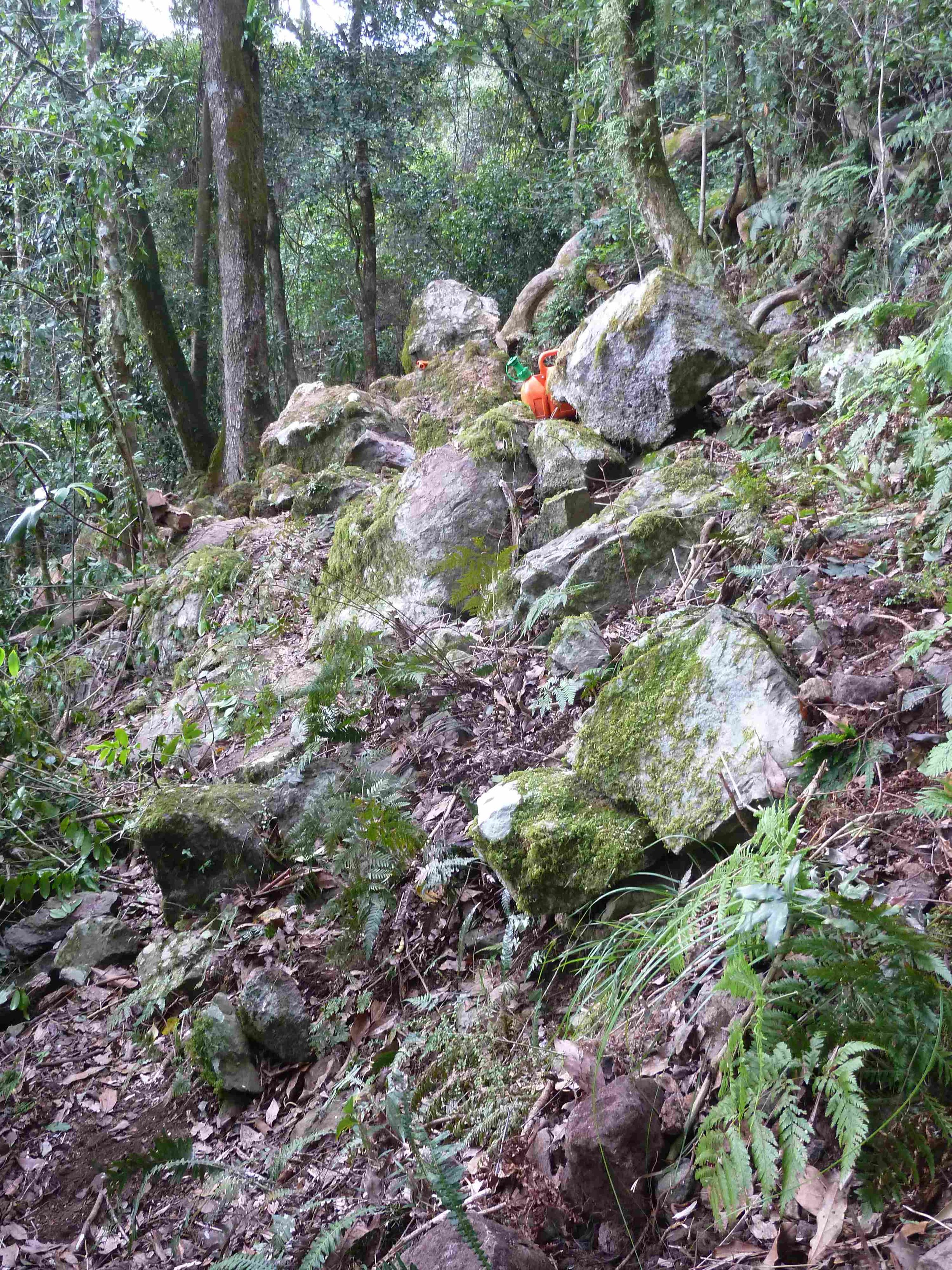 P1020835 landslip bypass, Mt Cordeaux, 2014, before 7.JPG