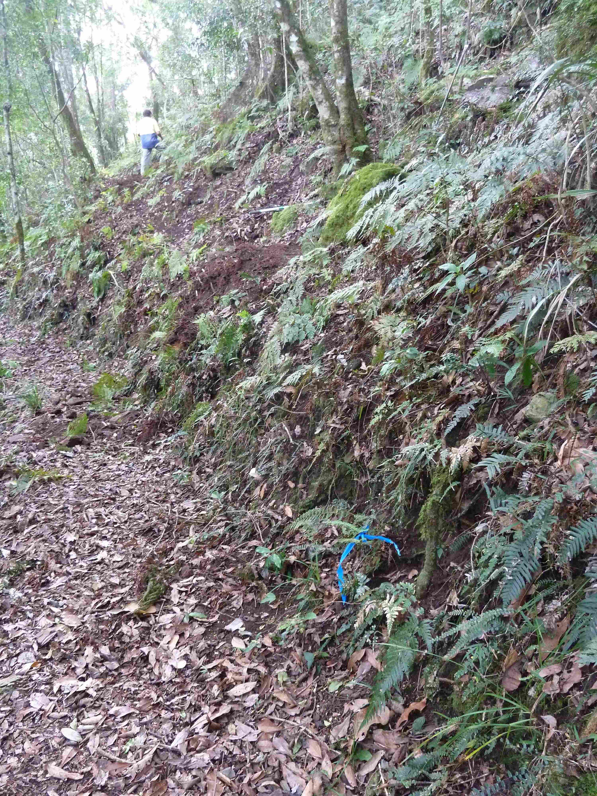 P1020842 landslip bypass, Mt Cordeaux, 2014, before 9.JPG
