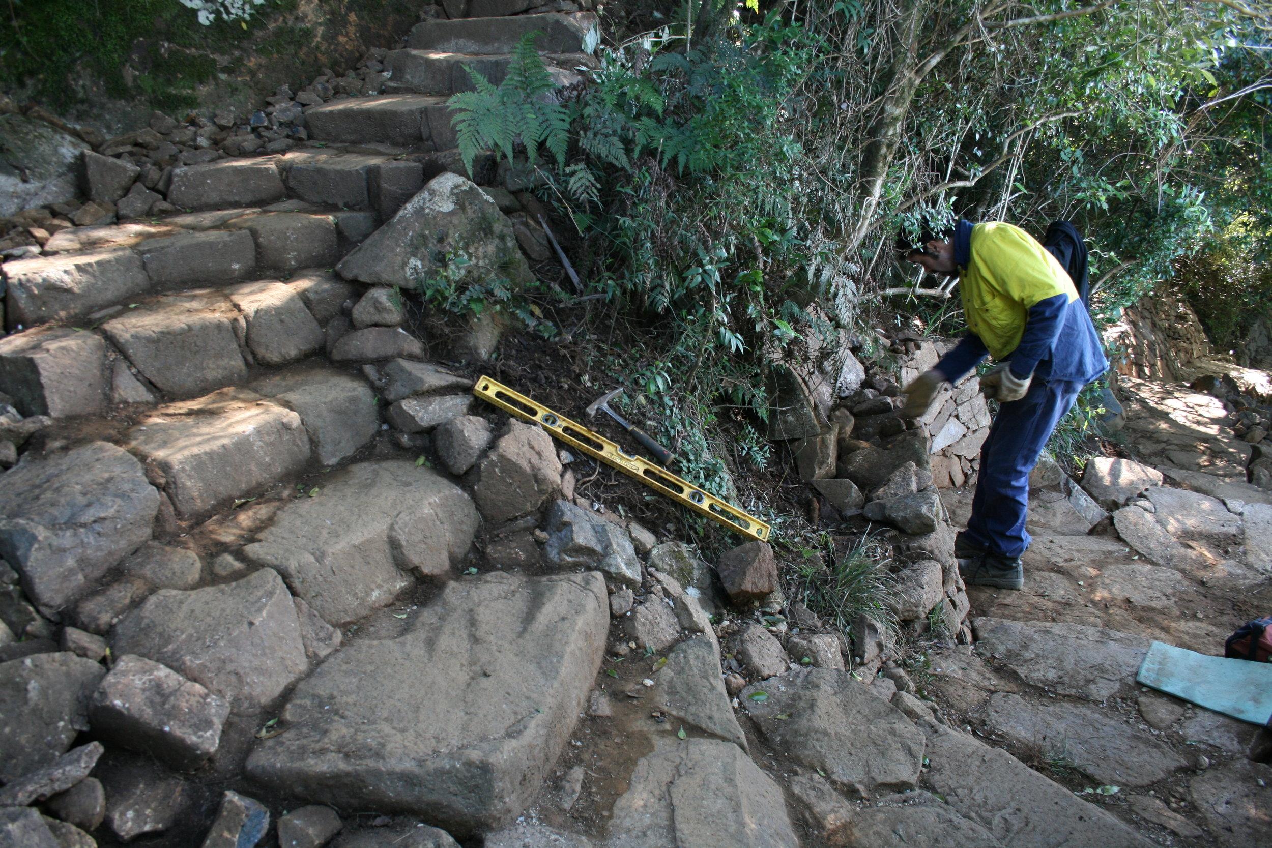 Bush Stone Steps
