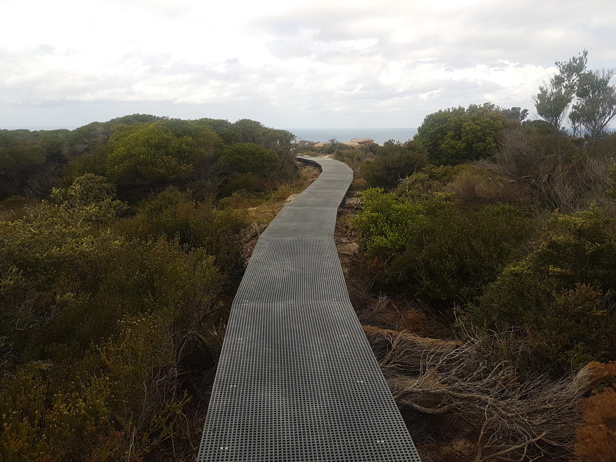 Completed FRP Boardwalk