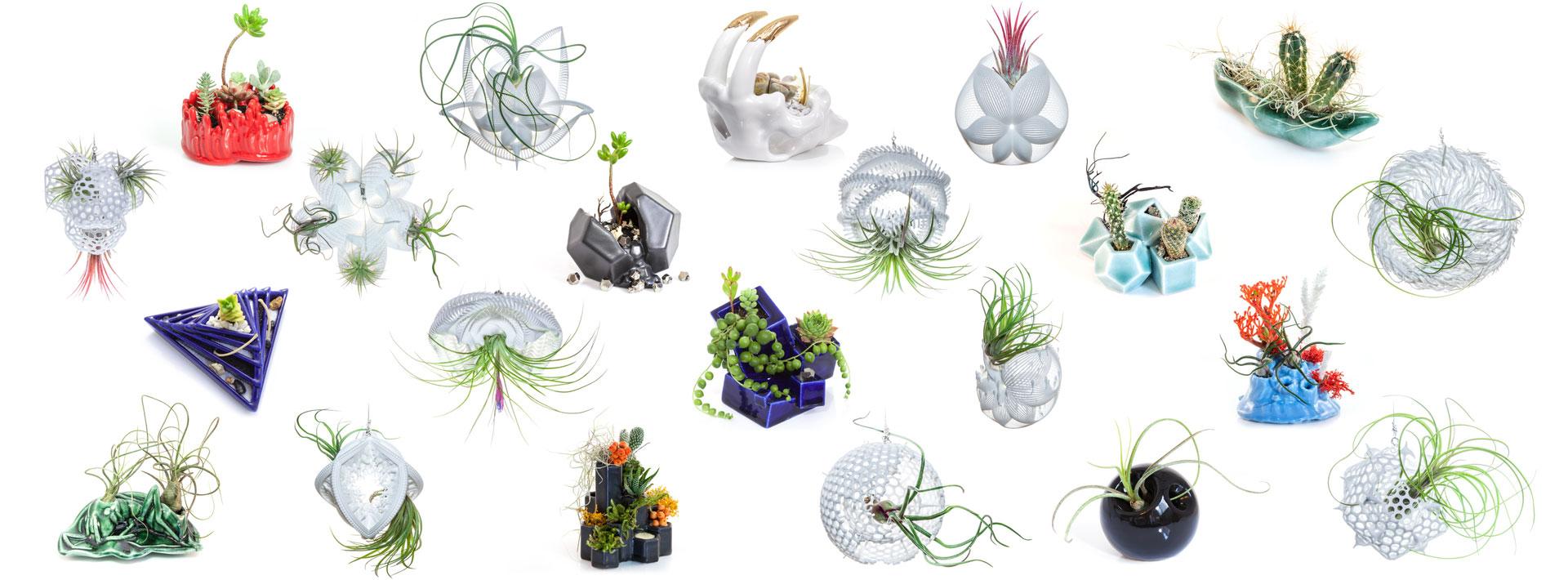 planters_all.jpg