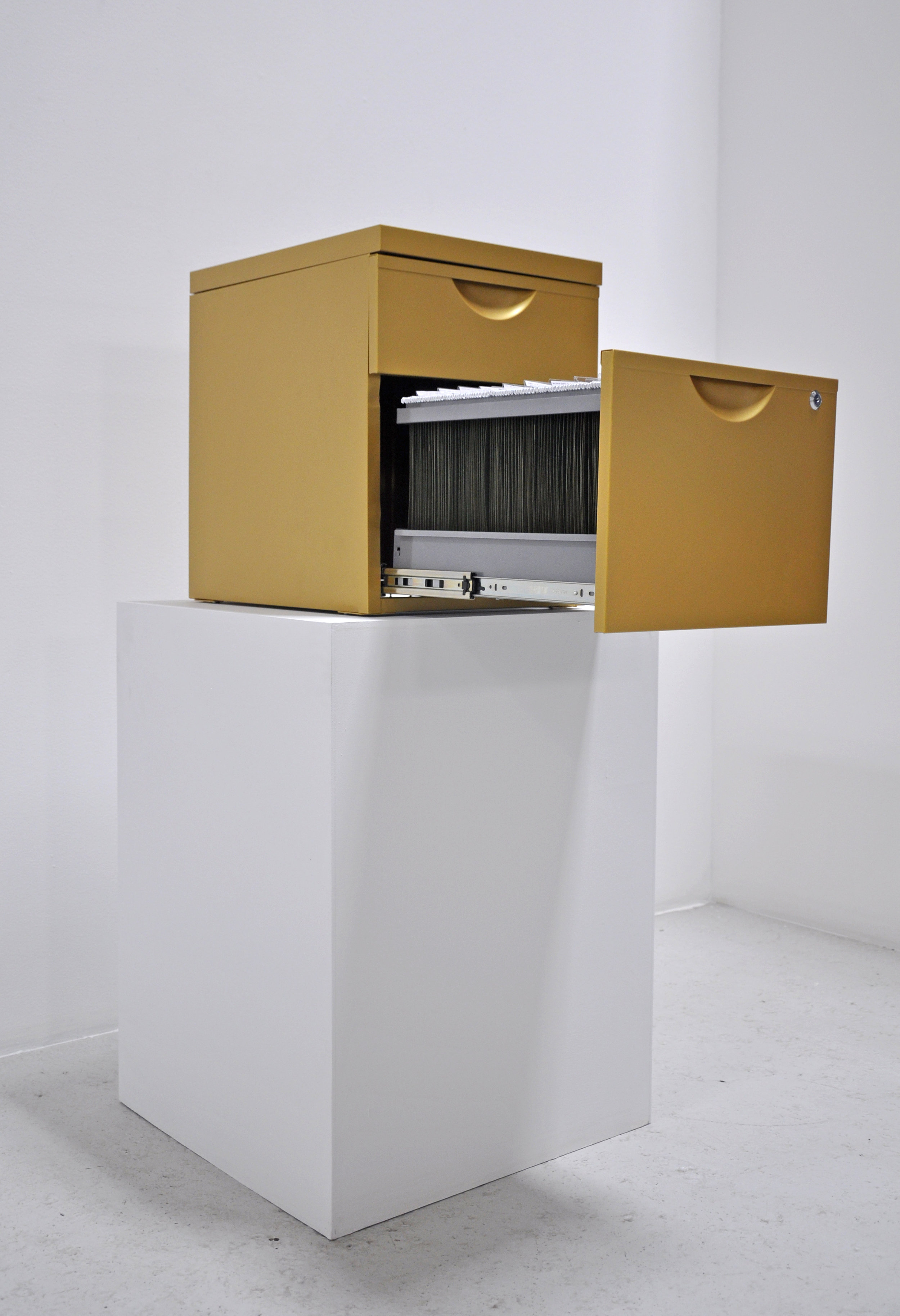 Mimi Onuoha, The Library of Missed Datasets, Steel Filing Cabinet, 16 x 19.5 x 22.5 in, 2018
