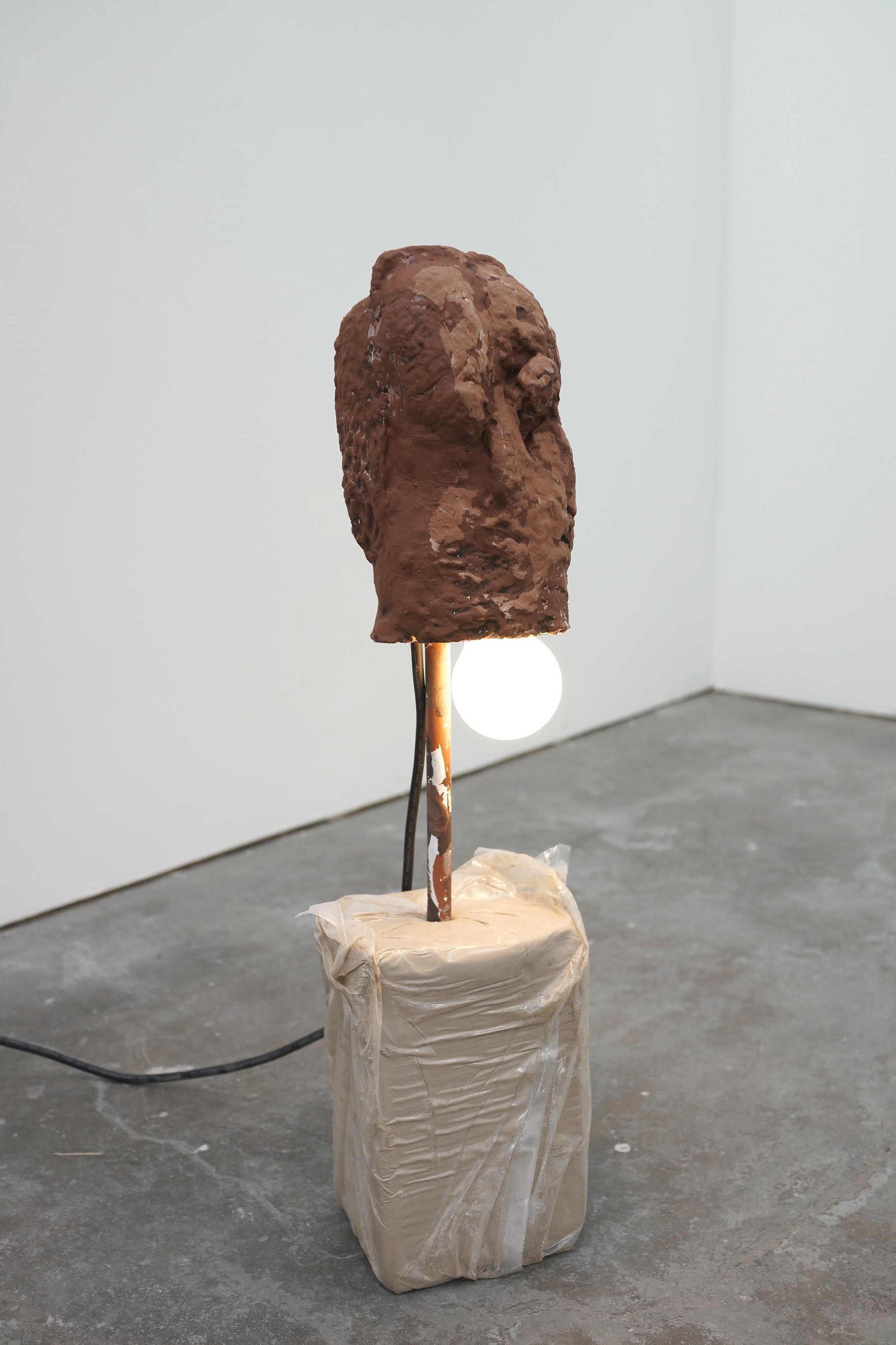 """Brion Nuda Rosch, """"Earth Head Light Bulb Wet Earth"""", acrylic, pigment, fired ceramic, metal, light bulb, bag of unfired wet clay, 2018"""