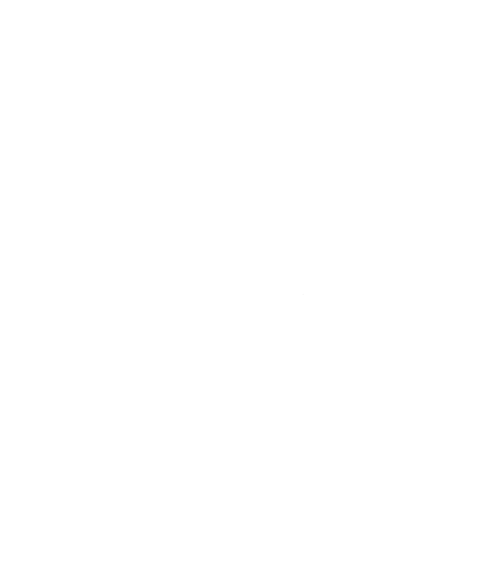 WesternHomeInspections_White.png