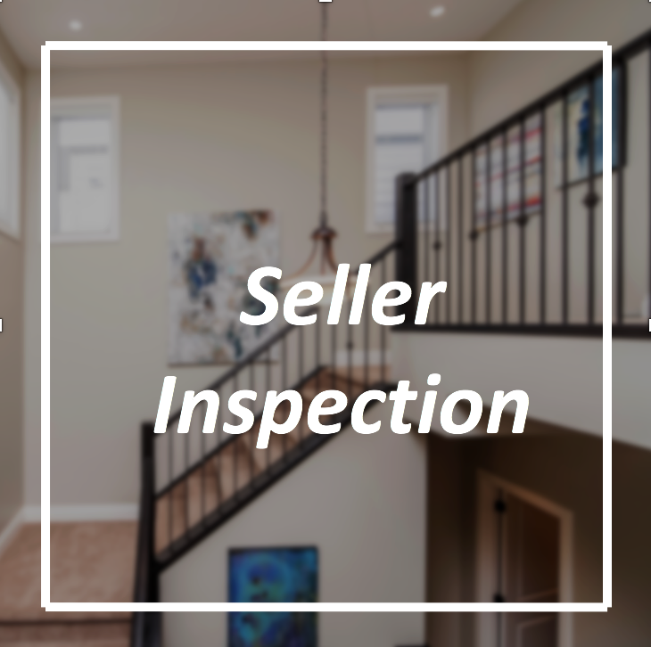 Seller Inspection - text.png