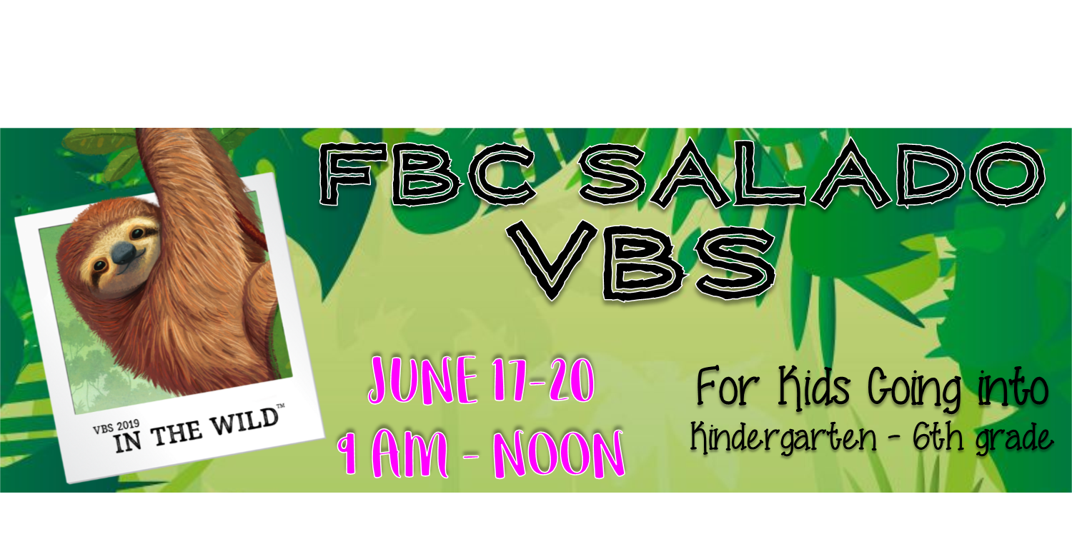 VBS banner 1 .png