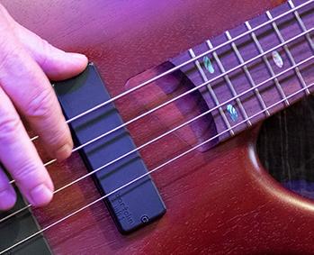 Bass Hands350.png