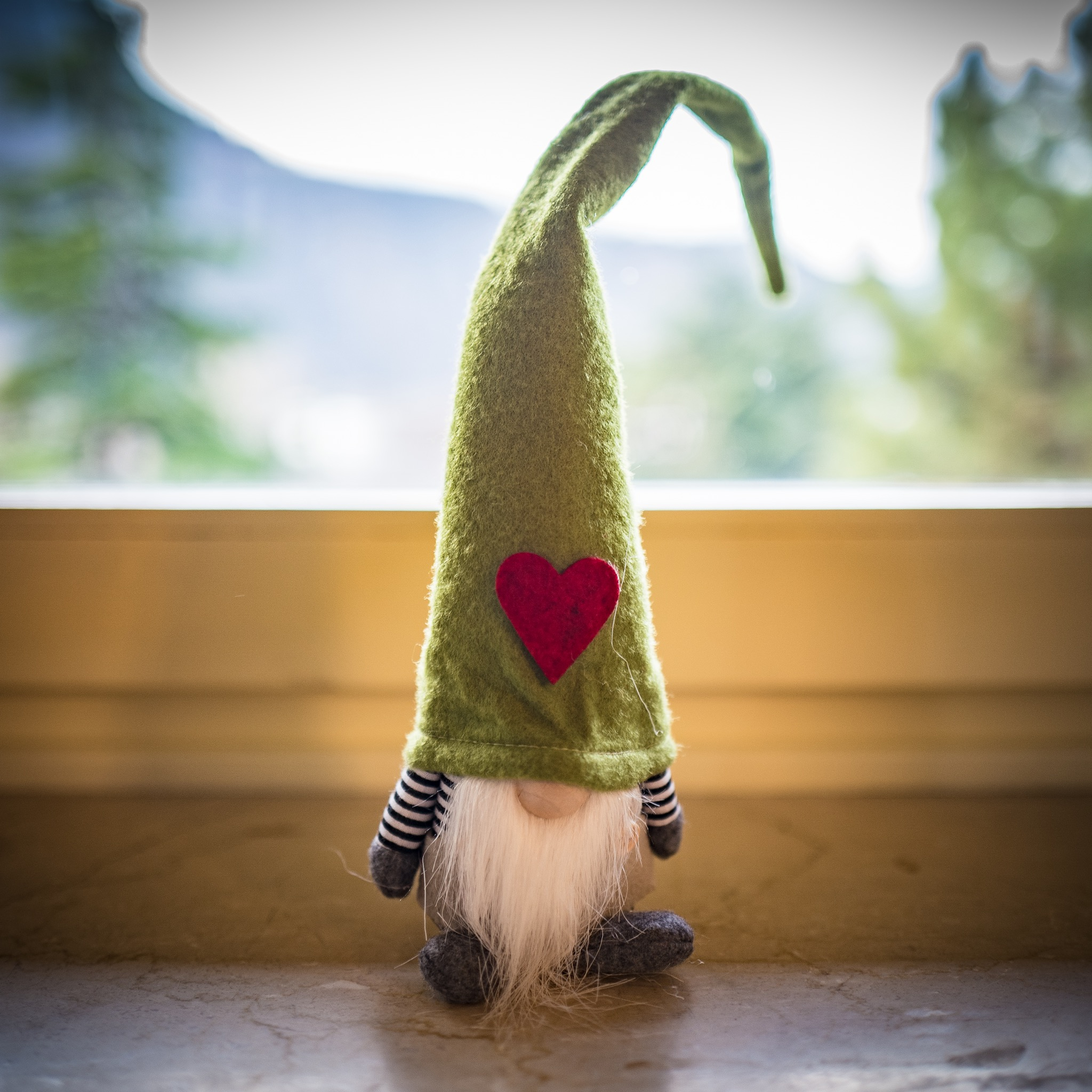Meet our new family mascot…Gnomeo!