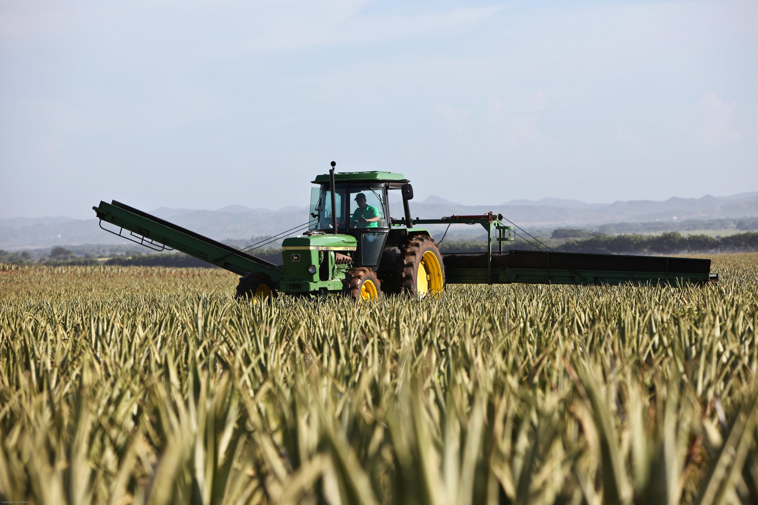 'Undeniable shift in our industry': Agribusiness Syngenta eyes new green farming goals -