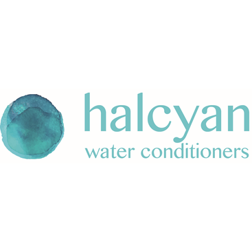 Halcyan b.png