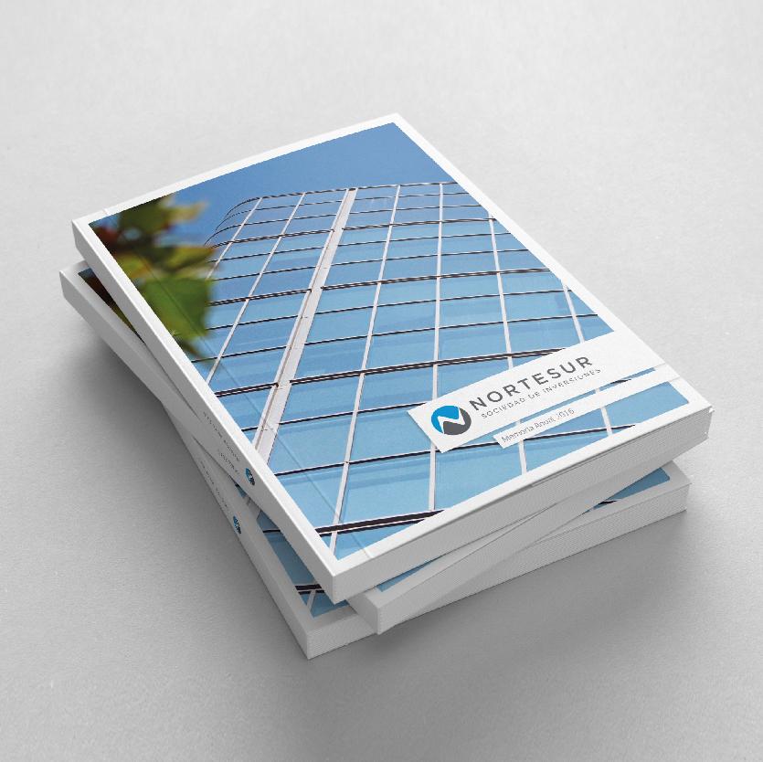 Annual Report  / Norte Sur