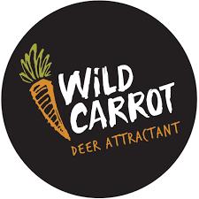 wildCarrot.png