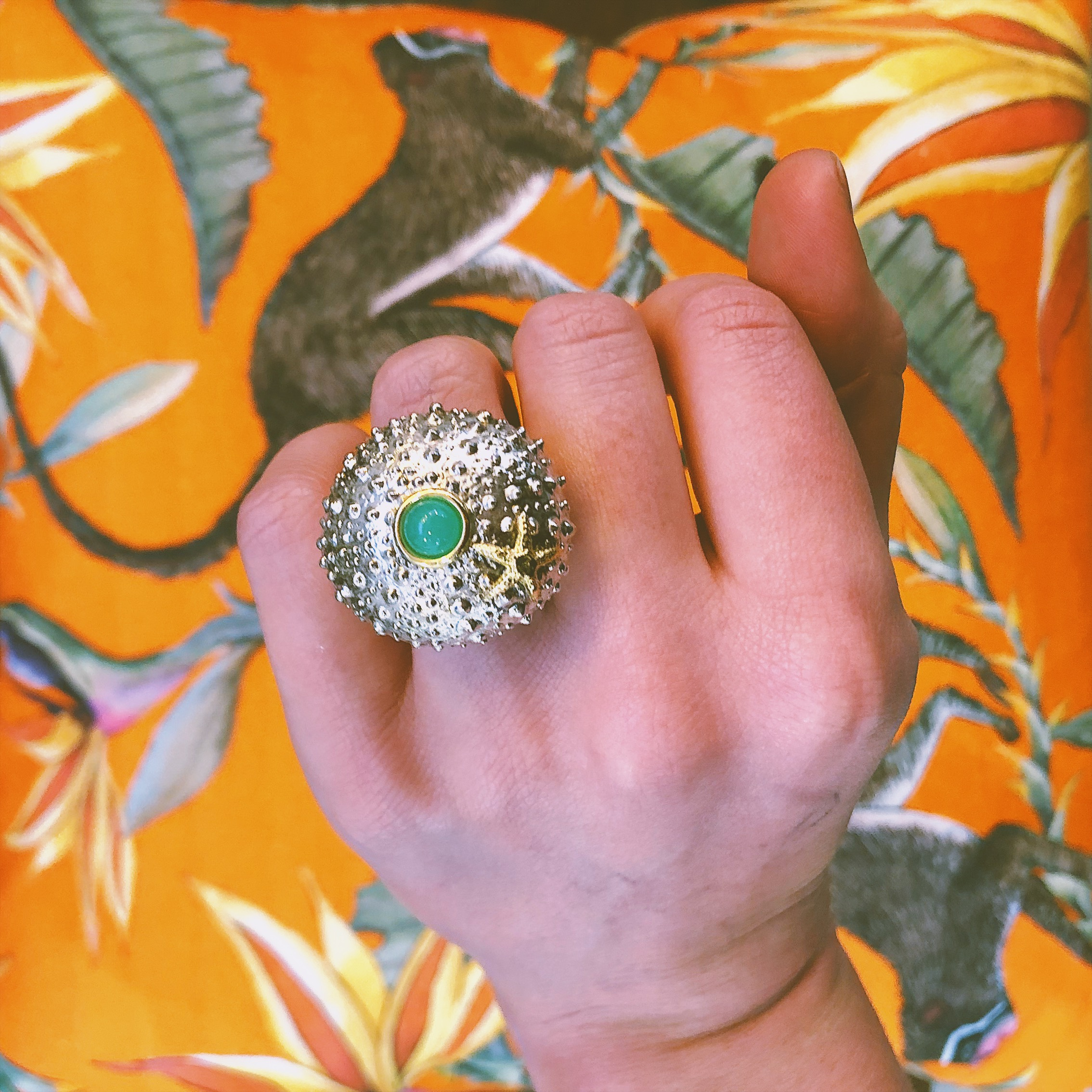 The sea urchin collection - on my wish list!