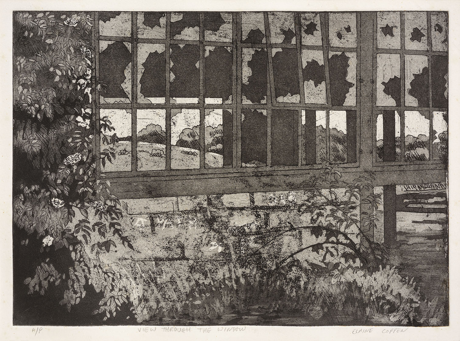 Elaine Coppen (b.1945)    View Through the Window,  1995, Etching on paper, 8 ½ x 11 ½ in, Signed – AP  [CAS 51] Acquired in 1995