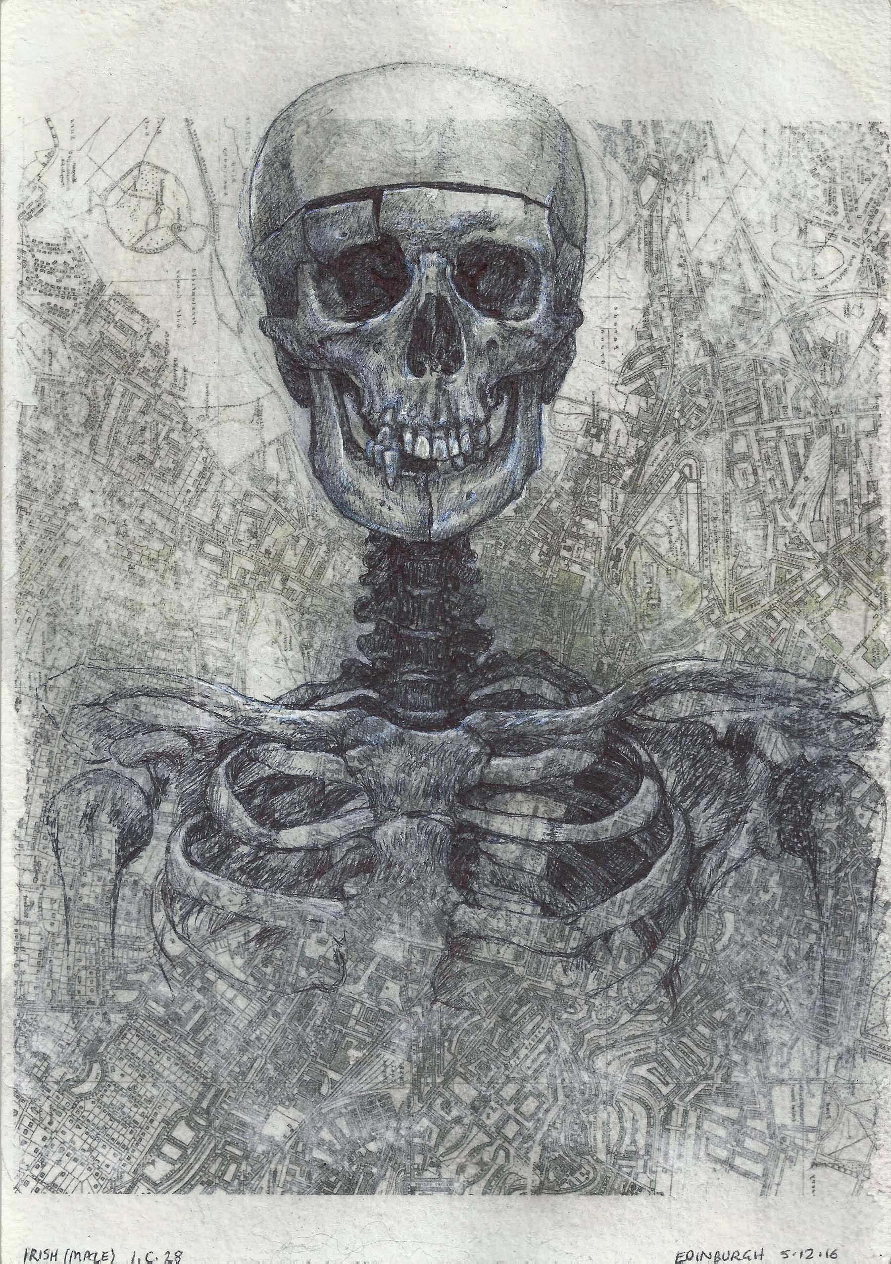 Irish Male , Biro and white pen over transfer on paper, 20 x 28 cm