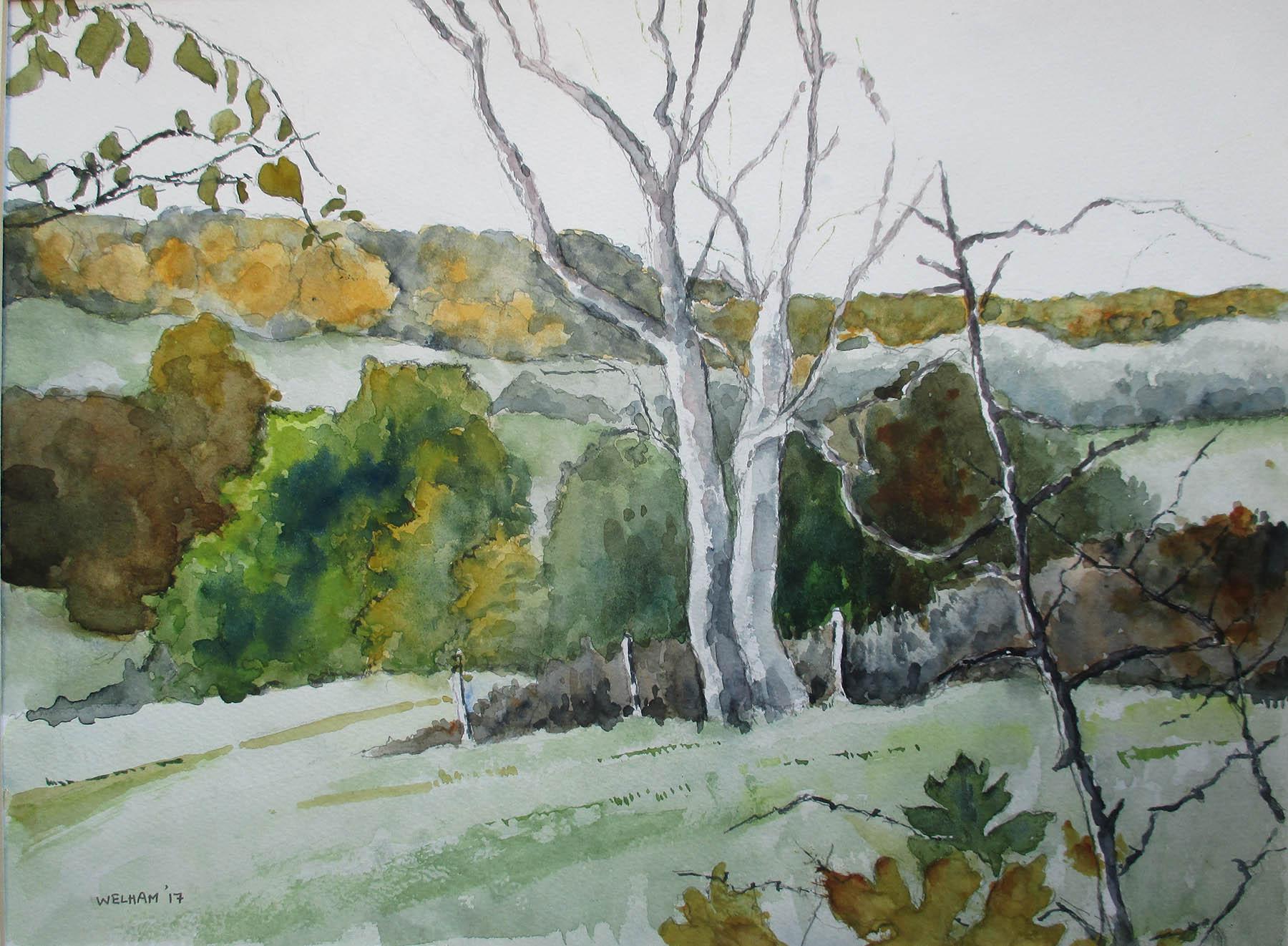 Near Hill House Wood, Autumn , Watercolour, 40 x 30 cm