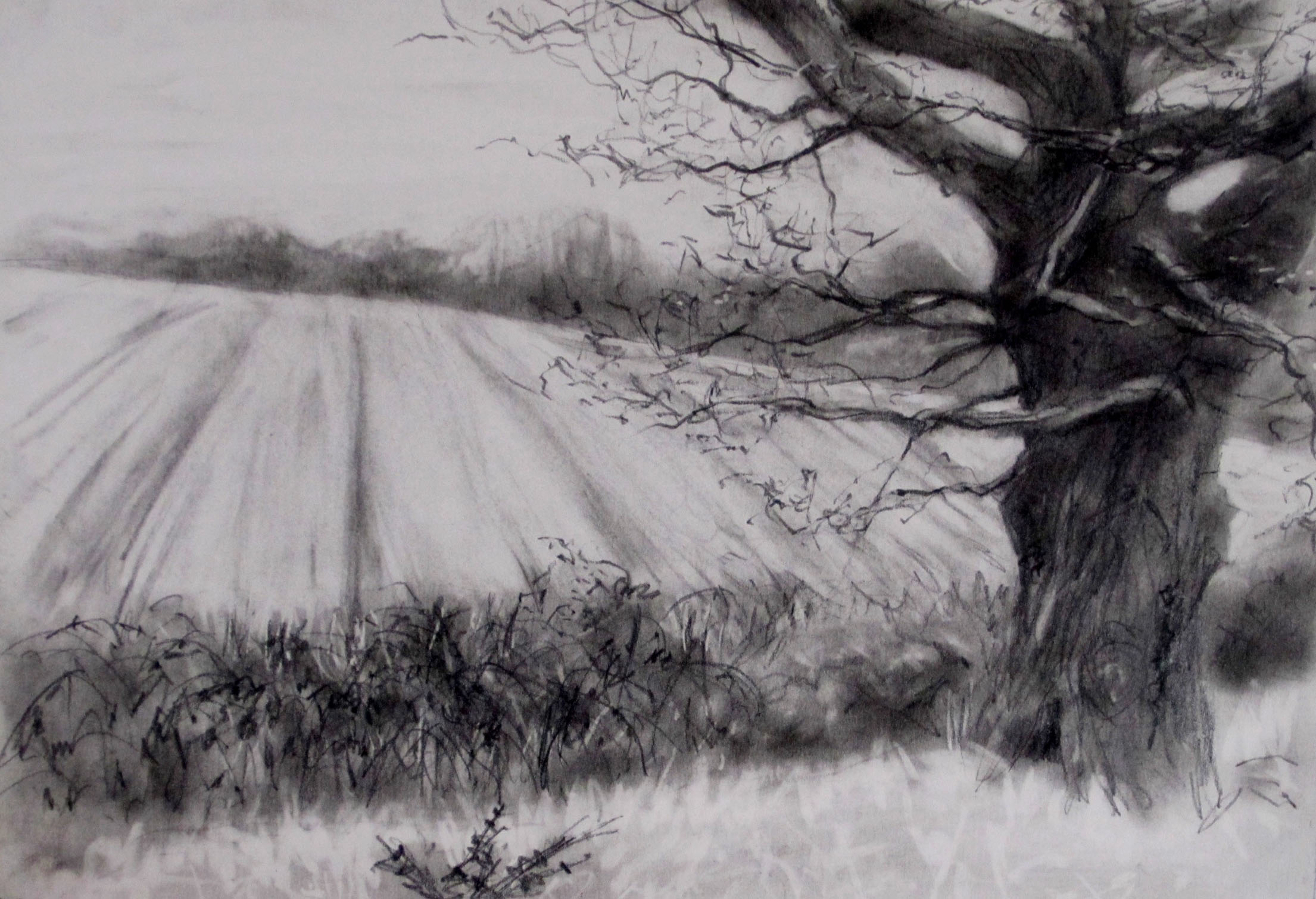 View over the Ditch , Graphite on paper, 22 x 15 cm