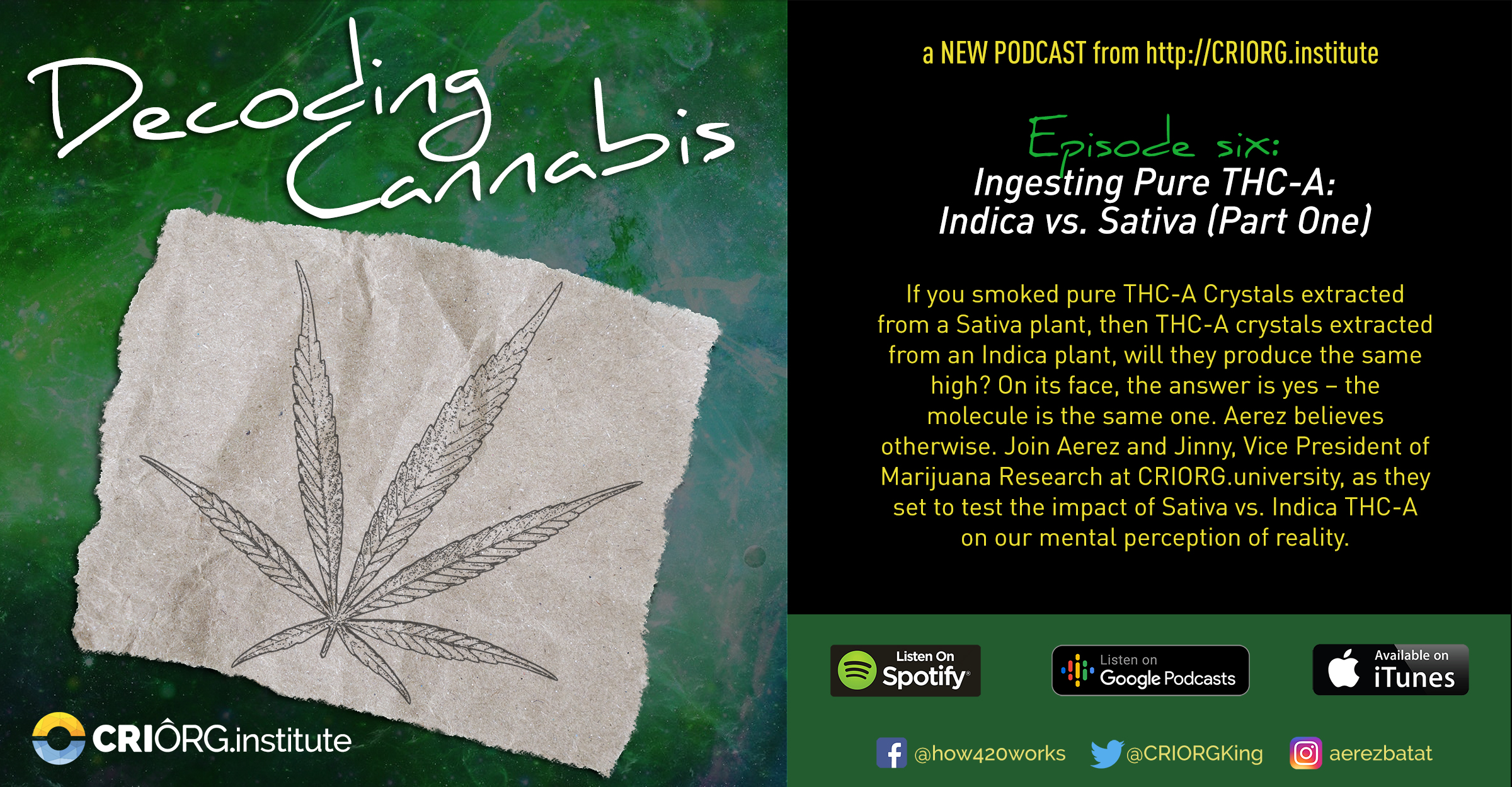 Cannabis Decoded FB Banner and Post Episode six.jpg