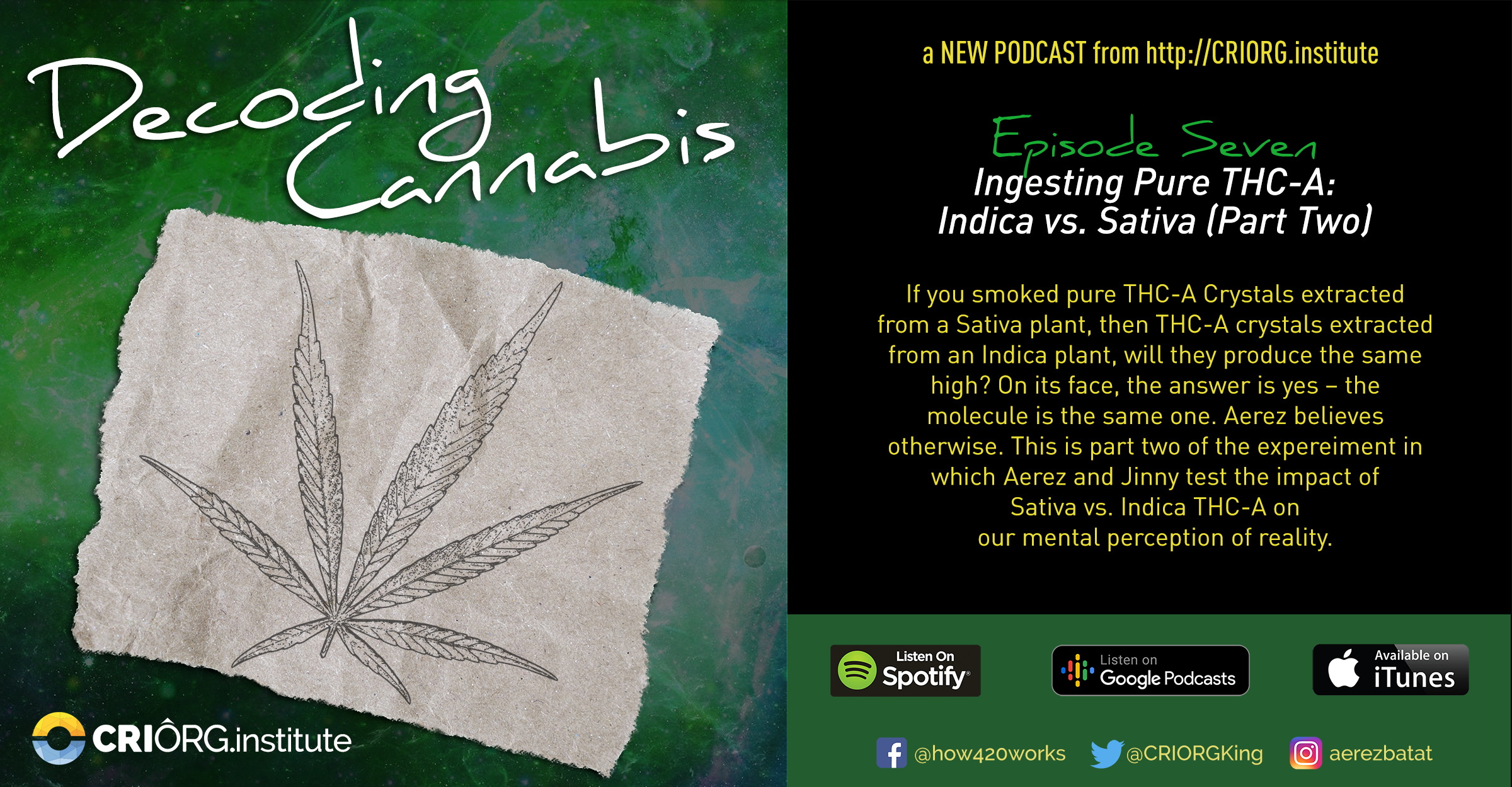 Cannabis Decoded FB Banner and Post Episode Seven.jpg