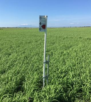 Resultados que valen la pena… - Tenemos experiencias de haber duplicado la producción de arroz, aumentado la producción de caña, disminuido los problemas de plagas en naranja… Esta tecnología llegó para quedarse.¡Confronte el cambio climático con nosotros, tenemos que evolucionar!