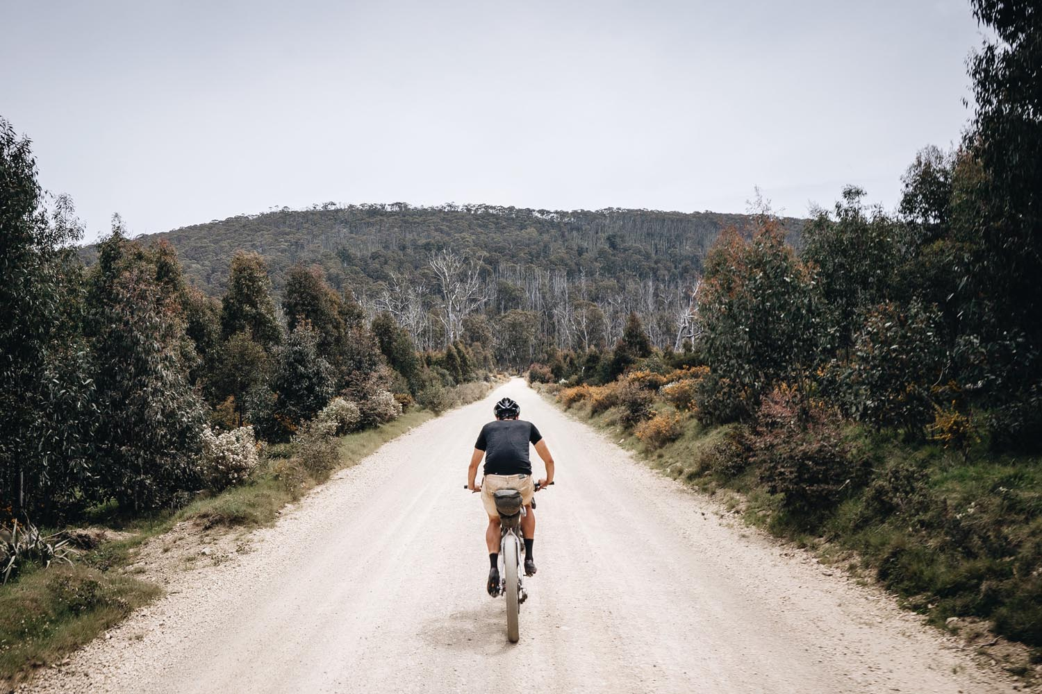 Welcome to    Bikepacking Trails    Learn More