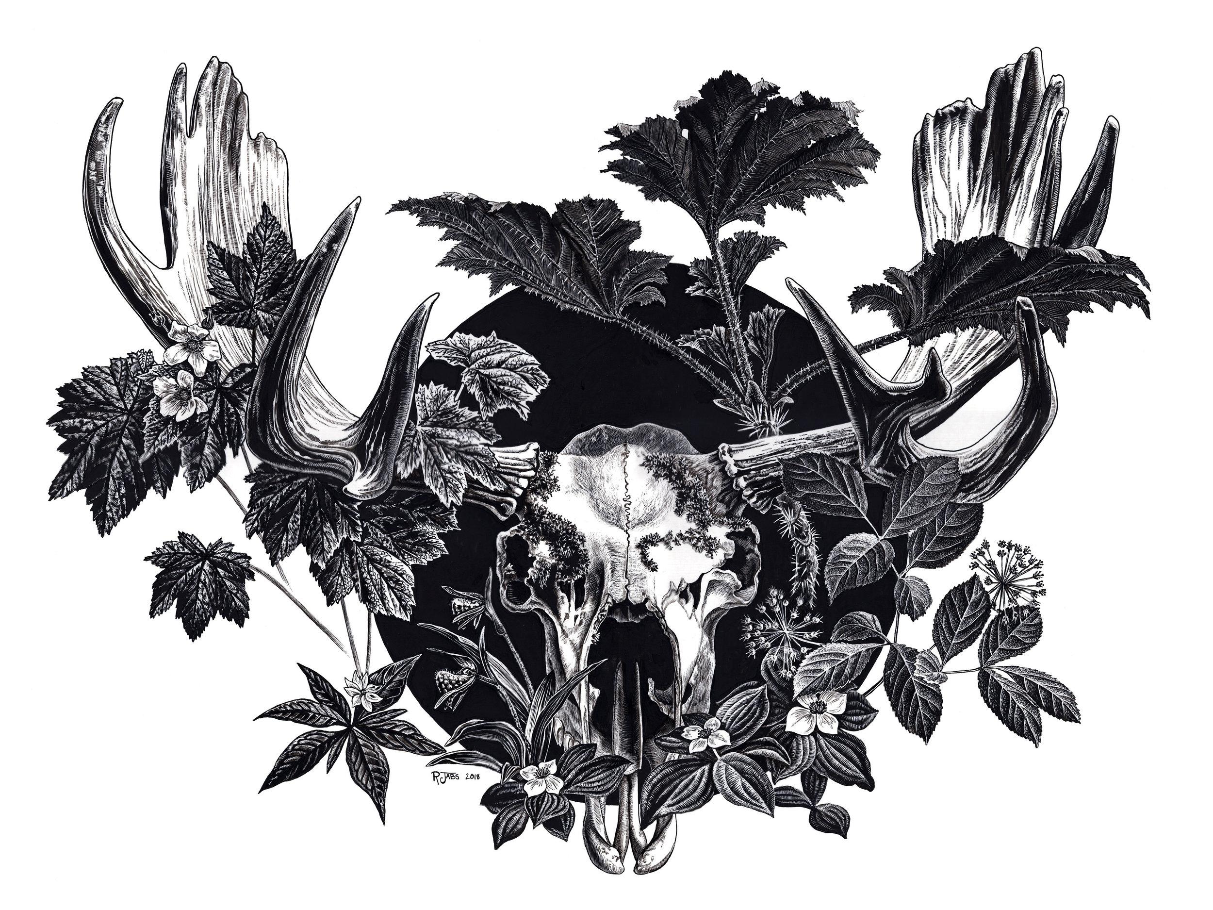"Garden and Grave  | 20"" x 16"" | Ink on Essdee Scratchboard"