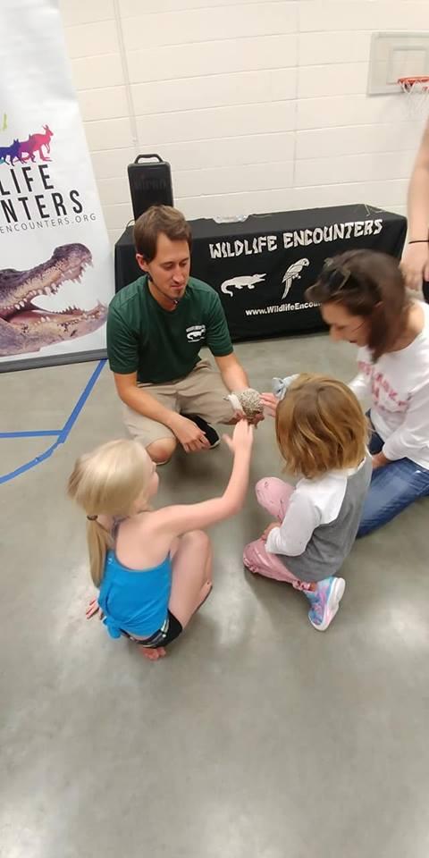 Kids touching hedgehog