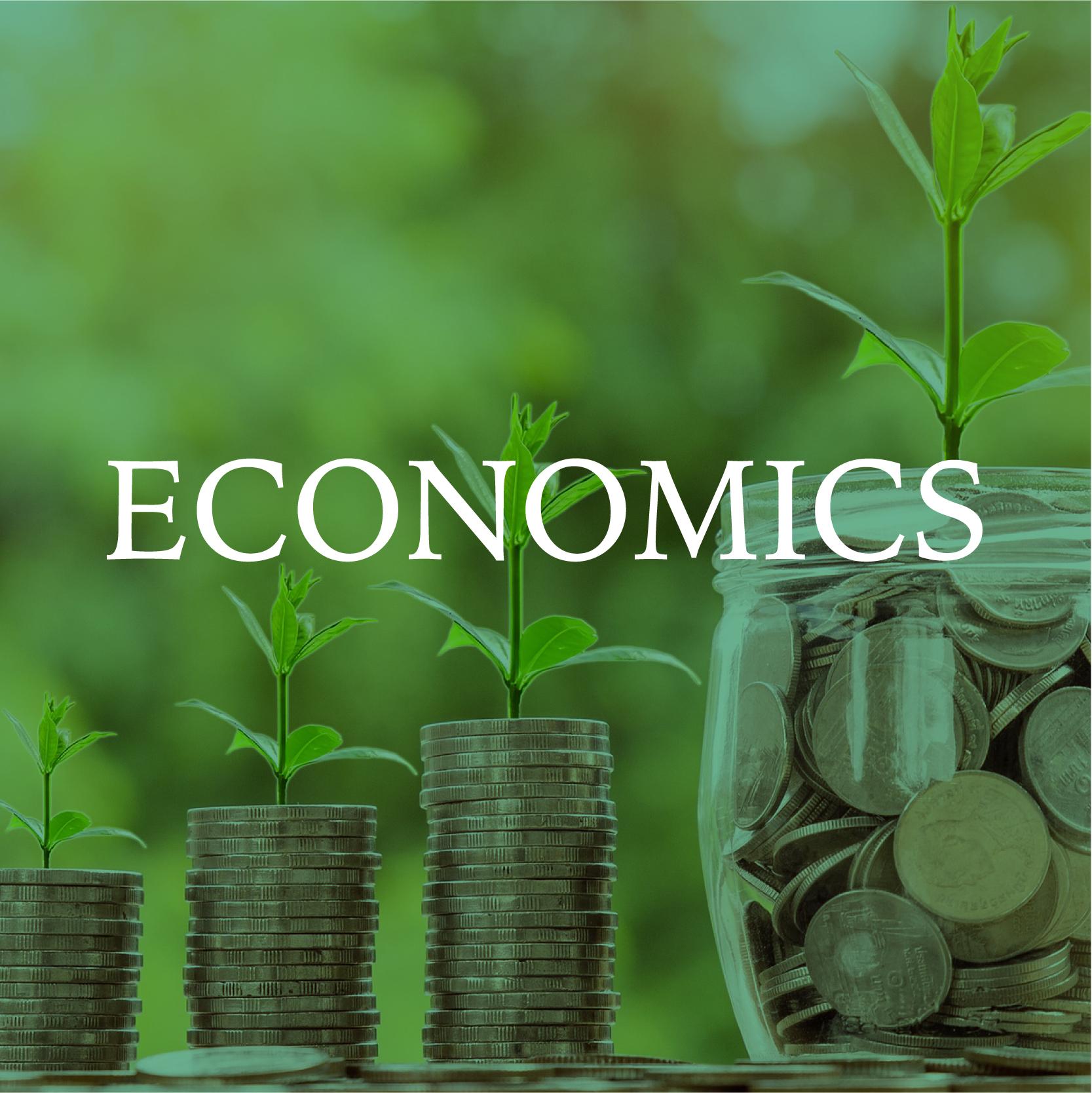 ECONOMICS -01.jpg
