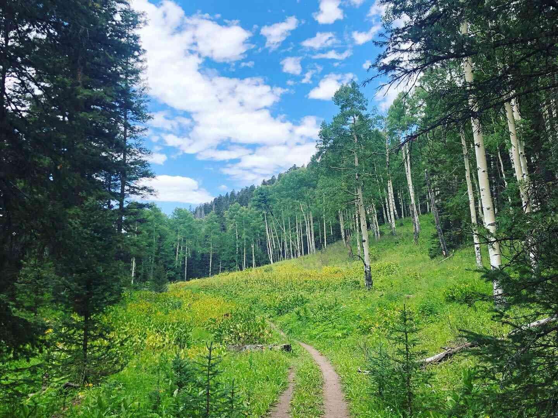 Conservation-Alliance-Trail-Viewjpg.jpg