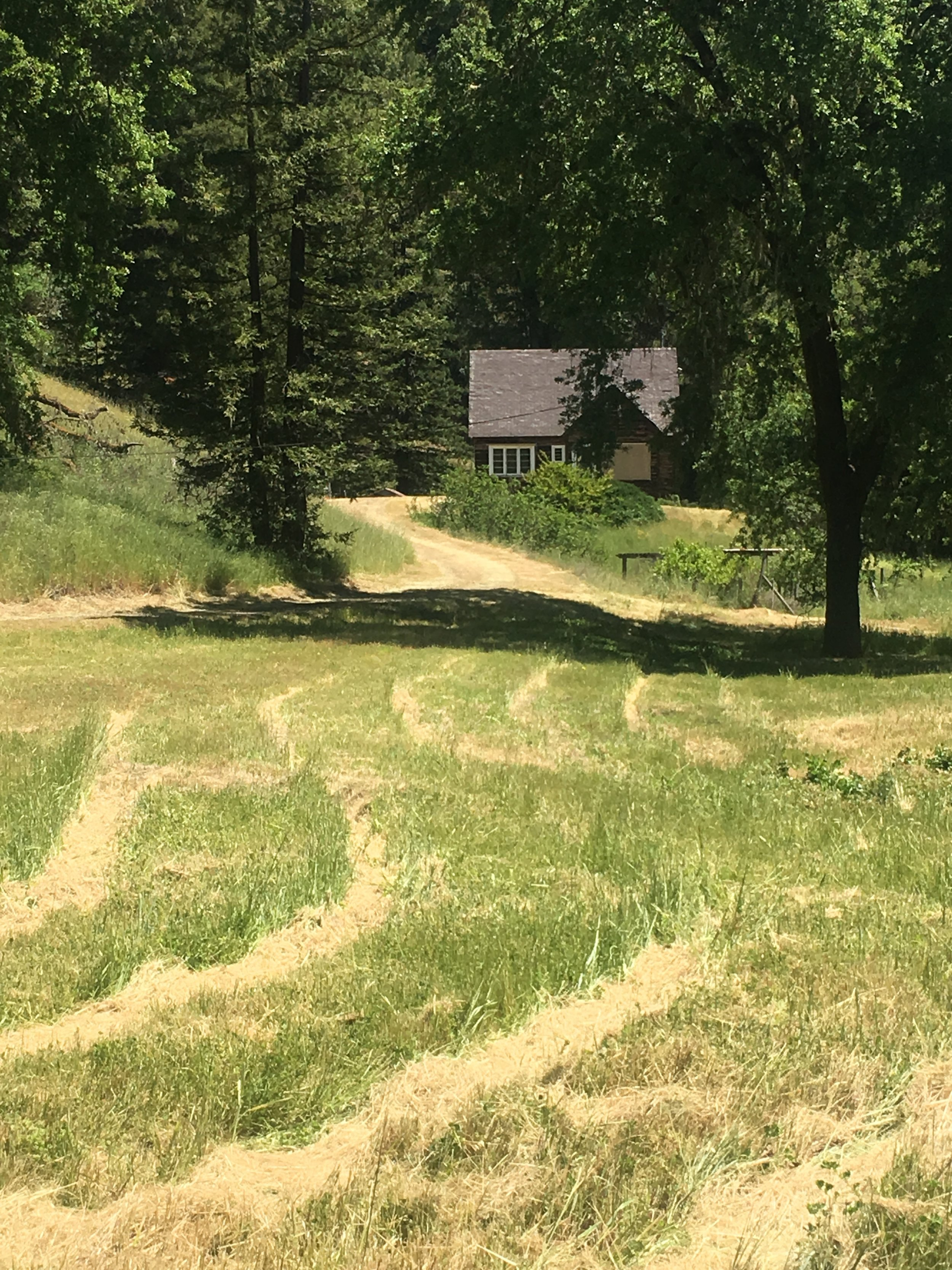 Meadows leading to a cabin for sale in Mendocino County near Yorkville.